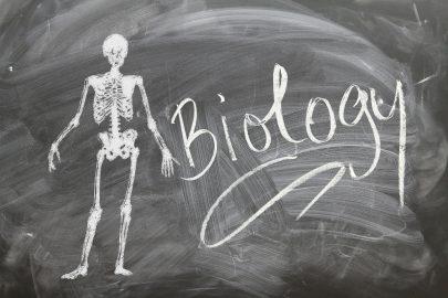 biologia na studiach psychologicznych