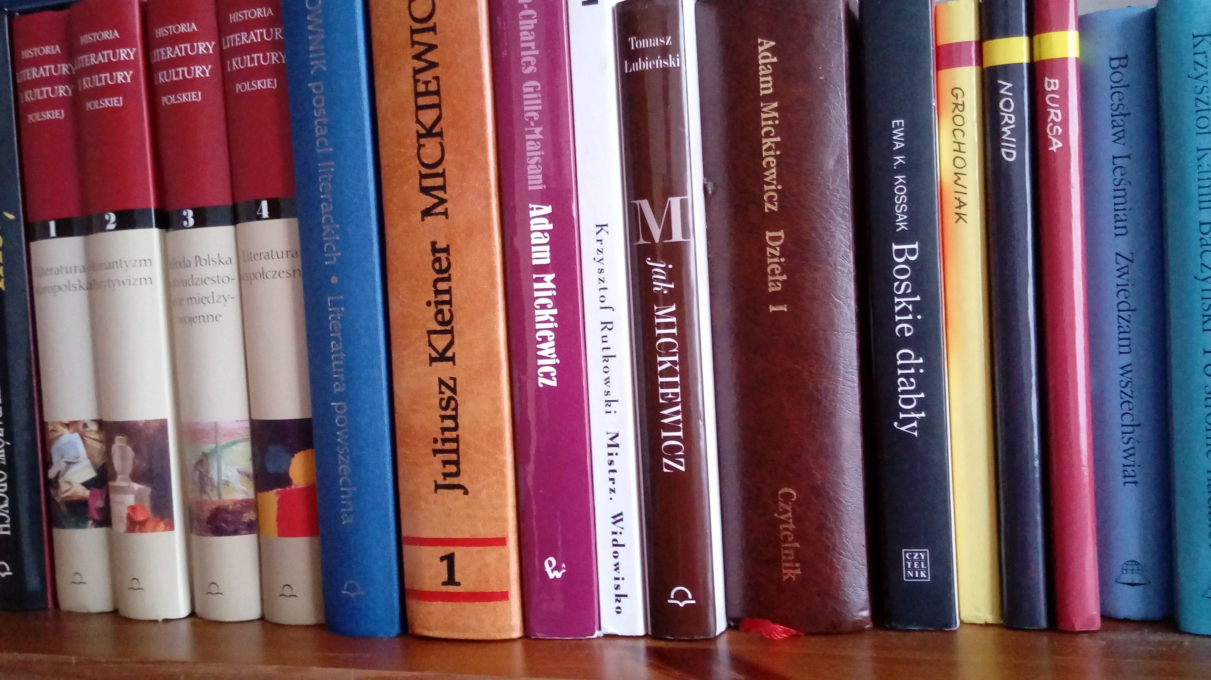 nadmiar książek w domowej biblioteczce